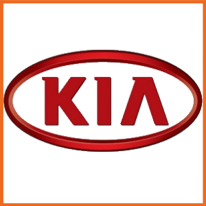 KIA Predator Pads Black Diamond