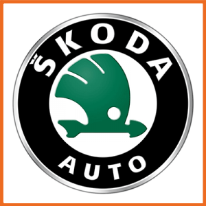 SKODA Dual Mass replacement sets