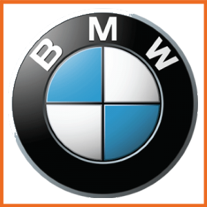 BMW ACL Bearings