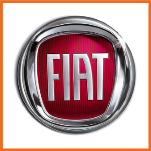 Fiat ACL Bearings