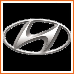 Hyundai Powerflex Bushes
