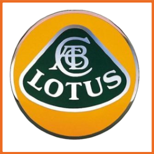 Lotus ACL Bearings